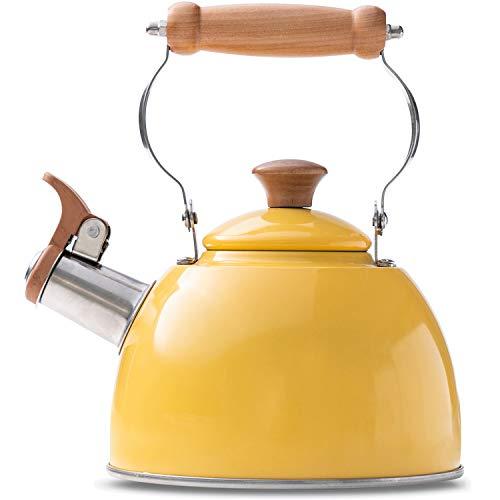 ROCKURWOK Tea Kettle Stovetop Whistling Teapot, Stainless Metal