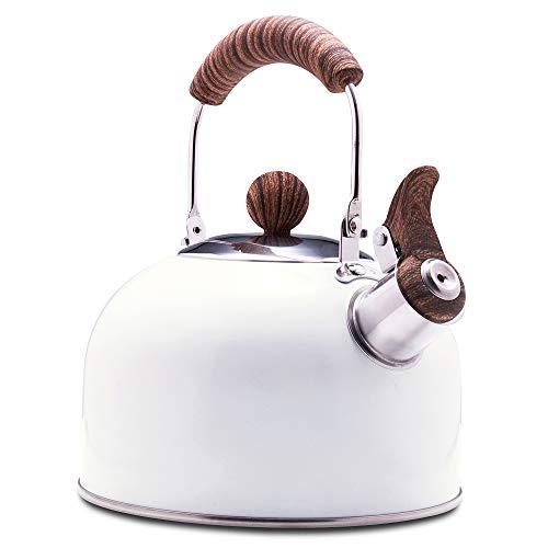 Tea Kettle, Stovetop Whistling Teapot