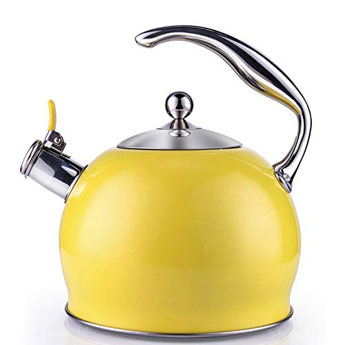 Tea Kettle Best 3 Quart induction Modern Stainless Steel