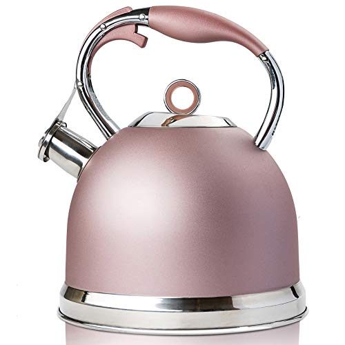 Tea Kettle Best 3 Quart induction Modern Stainless Steel Surgical