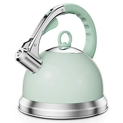 Tea Kettle Stovetop Stainless Steel Teapot with Loud Whistle