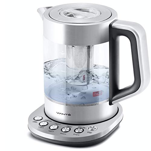 Electric Glass Kettle and Tea Maker with Temperature Controls
